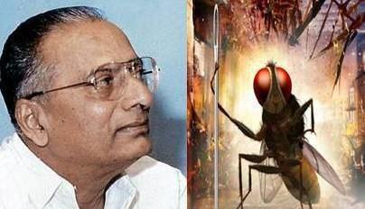 B. Nagi Reddy B Nagi Reddy Award for Eega Sai TeluguMirchicom