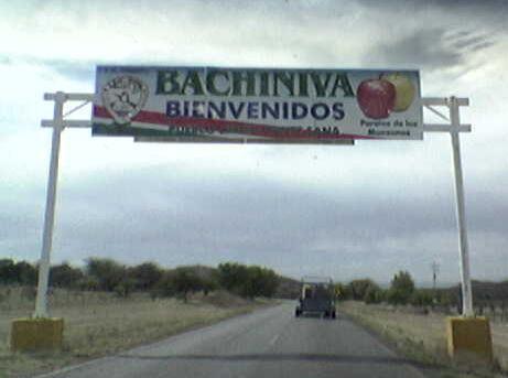 Bachíniva Alchetron The Free Social Encyclopedia