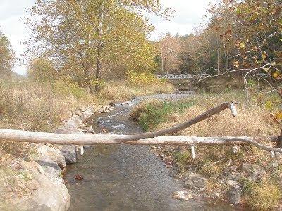 Back Creek (Potomac River) httpssitesgooglecomsiteshenandoahvalleytu