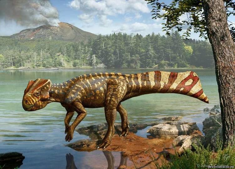 Bainoceratops devonianucozrufr11831669jpg