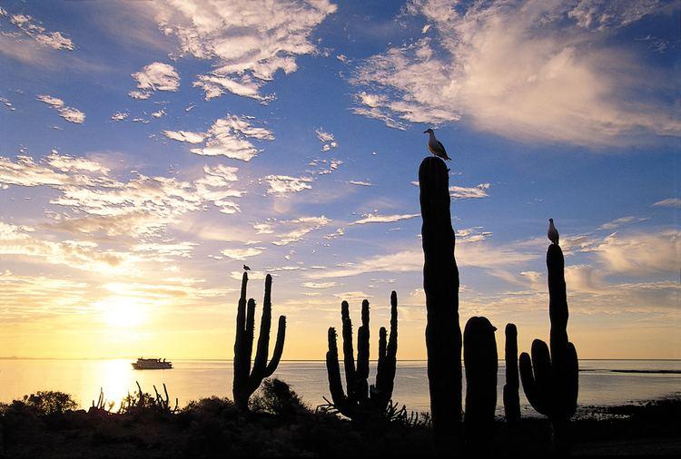 Baja California Beautiful Landscapes of Baja California