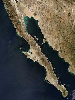 Baja California Peninsula httpsuploadwikimediaorgwikipediacommonsthu