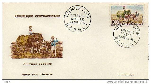 Bangui Culture of Bangui