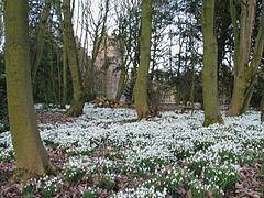 Bank Hall Gardens httpsuploadwikimediaorgwikipediacommonsthu