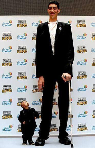Bao Xishun The world39s tallest man Bao Xishun with He Pingping who