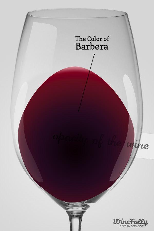 Barbera winefollycomwpcontentuploads201303colorof