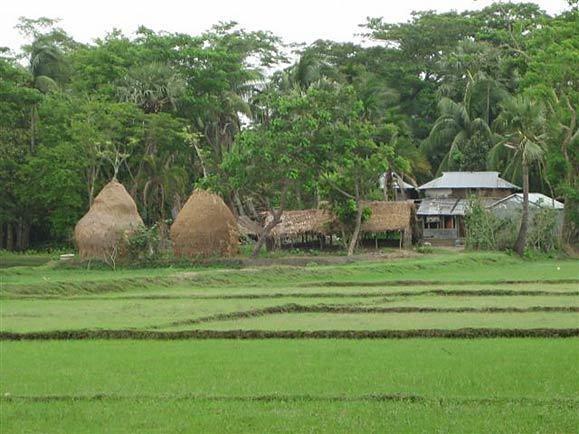 Barisal Beautiful Landscapes of Barisal