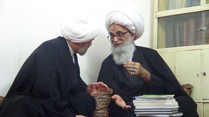 Bashir al-Najafi Najaf WILAYAH NEWS