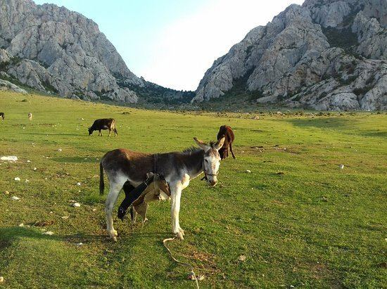Life in Batken region