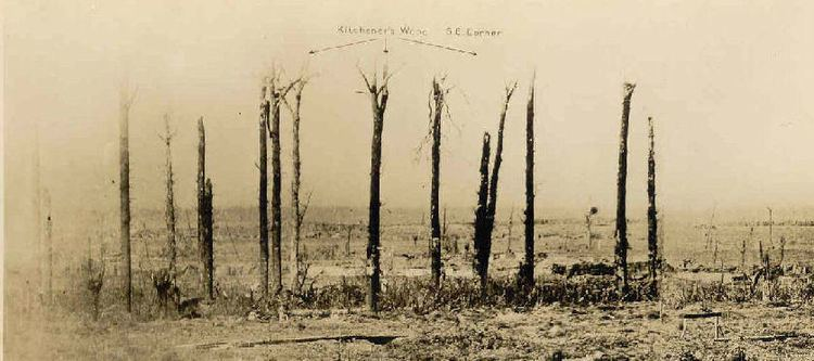 Battle of Kitcheners' Wood Peterborough during the First World War 1914 1918 20120429