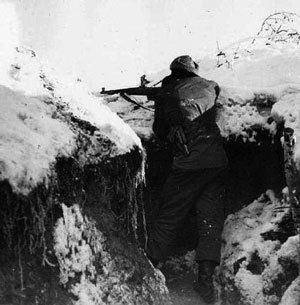 Battle of Narva (1944) Hobby