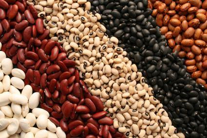 Bean Brazilian Style Beans A Taste of Brazil