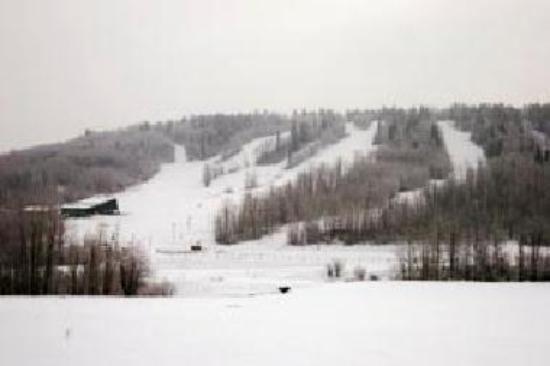 Bear Mountain Ski Hill httpsmediacdntripadvisorcommediaphotos01