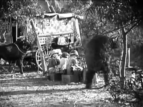 Bear Shooters Bear Shooters 1930 YouTube