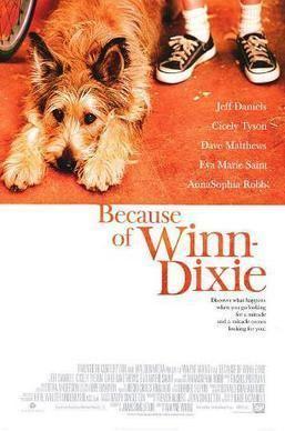 Because of Winn-Dixie (film) Because of WinnDixie film Wikipedia