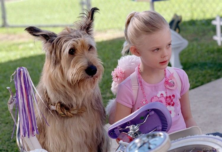 Because of Winn-Dixie (film) elle fanning BECAUSE OF WINN DIXIE Because of WinnDixie publicity