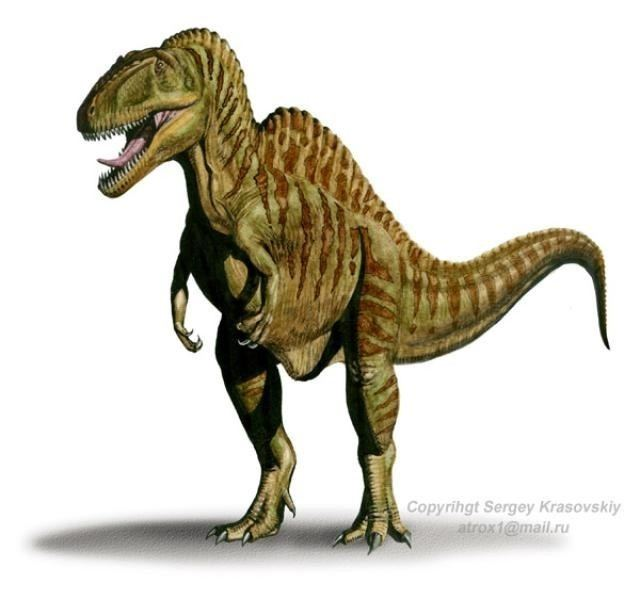 Becklespinax Becklespinax Pictures amp Facts The Dinosaur Database