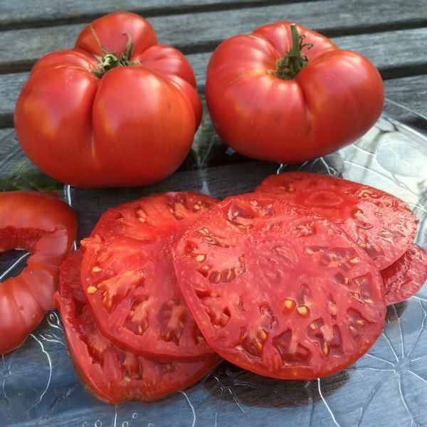 Beefsteak tomato Tomato Varieties Types of Tomatoes Heirloom Tomatoes