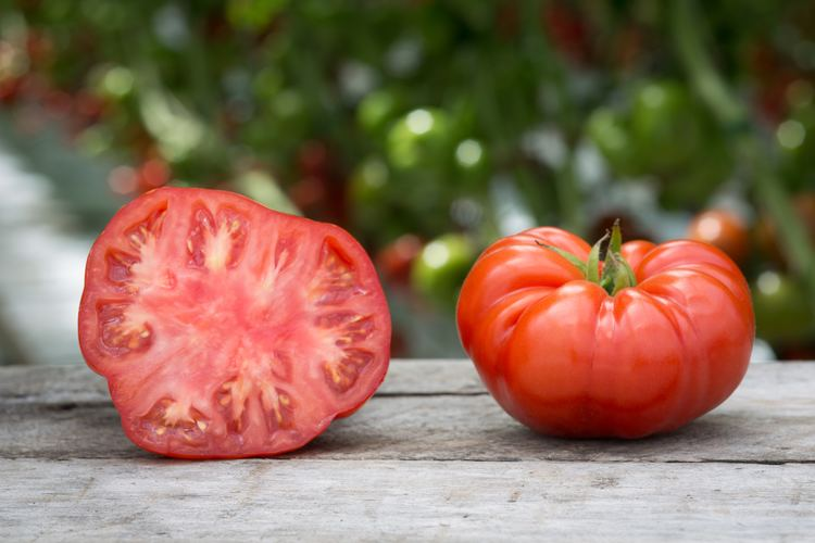 Beefsteak tomato Why your beefsteak tomatoes are getting beefier Public Radio