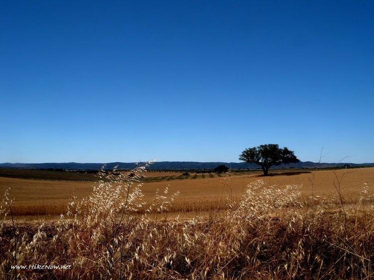 Beja, Portugal Beautiful Landscapes of Beja, Portugal
