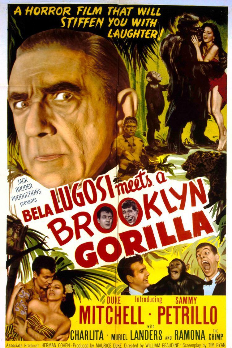 Bela Lugosi Meets a Brooklyn Gorilla wwwgstaticcomtvthumbmovieposters41809p41809