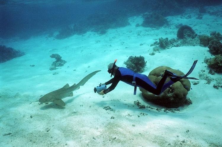Ben Cropp underwater explorer ben cropp seaUW