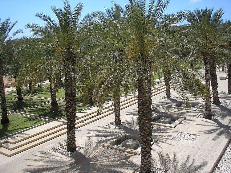 Ben-Gurion International Airport Garden