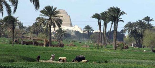 Beni Suef Beni Suef governorate