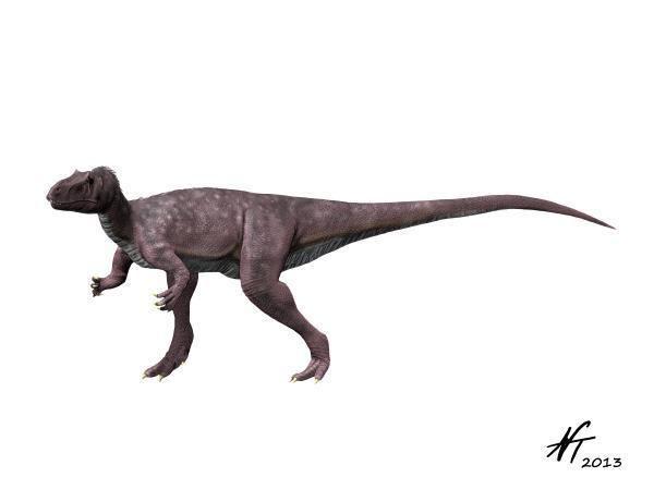 Berberosaurus Berberosaurus liassicus Spinops