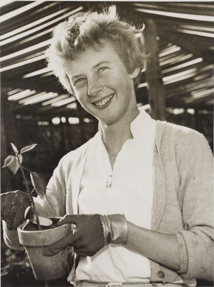 Betty Cuthbert httpsuploadwikimediaorgwikipediacommonscc
