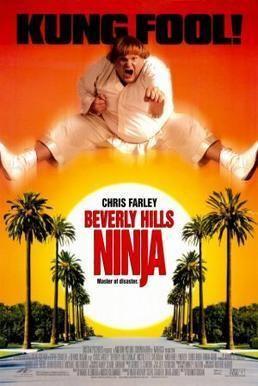 Beverly Hills Ninja Beverly Hills Ninja Wikipedia