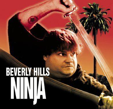 Beverly Hills Ninja Beverly Hills Ninja 2 Moviehole