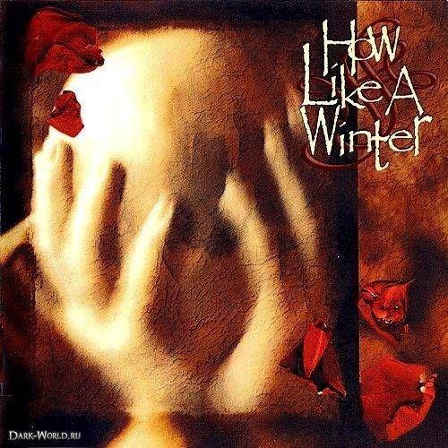 ...Beyond My Grey Wake wwwmusicbazaarcomalbumimagesvol4367367604