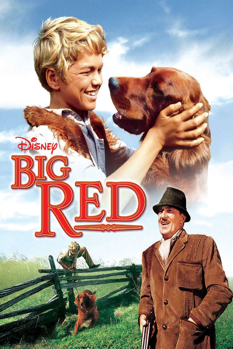 Big Red (film) Big Red Disney Movies