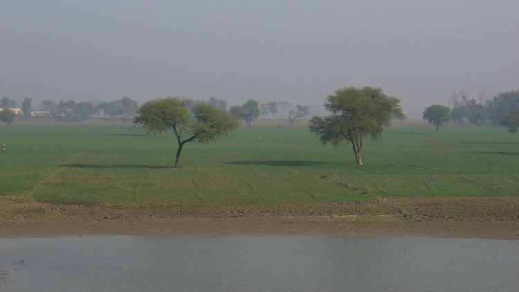 Bihar Beautiful Landscapes of Bihar