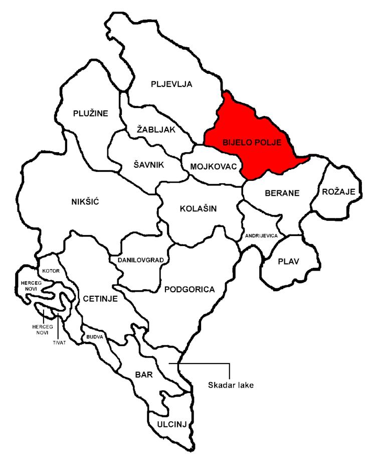 Bijelo Polje in the past, History of Bijelo Polje