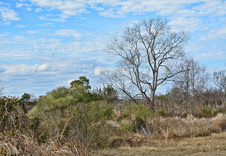 Biloxi, Mississippi Beautiful Landscapes of Biloxi, Mississippi