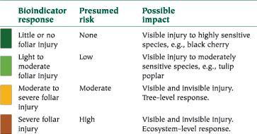 Bioindicator Ozone Bioindicator Plants Eastern Forest Environmental Threat