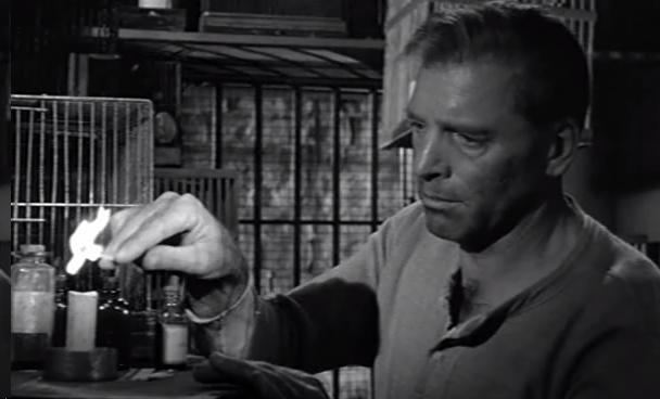 Birdman of Alcatraz (film) movie scenes Birdman of Alcatraz is a problematic film for a few reasons The most obvious is the real Robert Stroud The film wants to show prison as problematic and