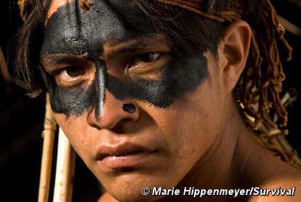 BirdWatchers Film depicting Guarani plight wins prestigious award Survival