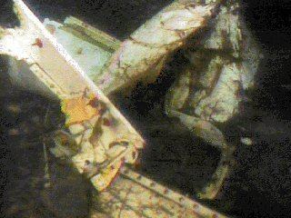 Birgenair Flight 301 Crash One Birgenair Flight 301