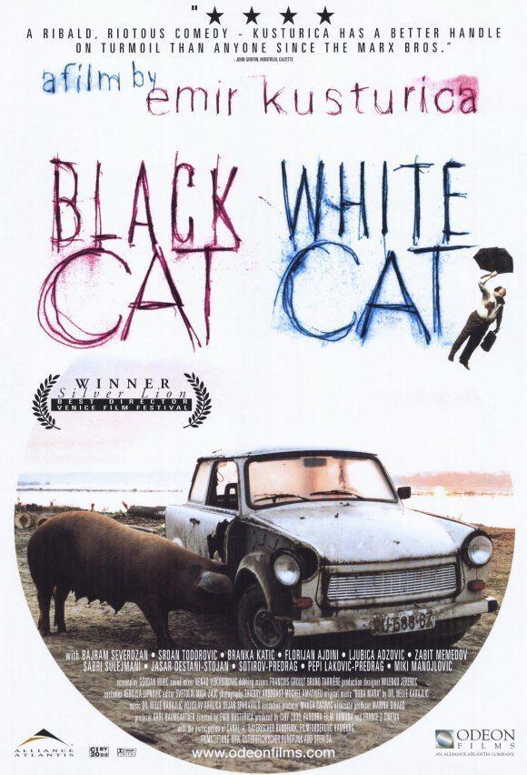 Black Cat, White Cat Black Cat White Cat Acton Film Club