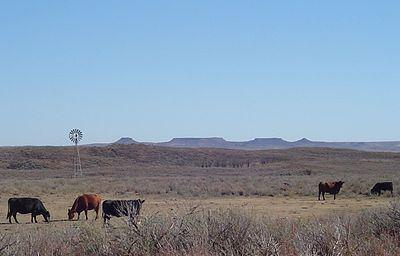 Black Kettle National Grassland httpsuploadwikimediaorgwikipediacommonsthu
