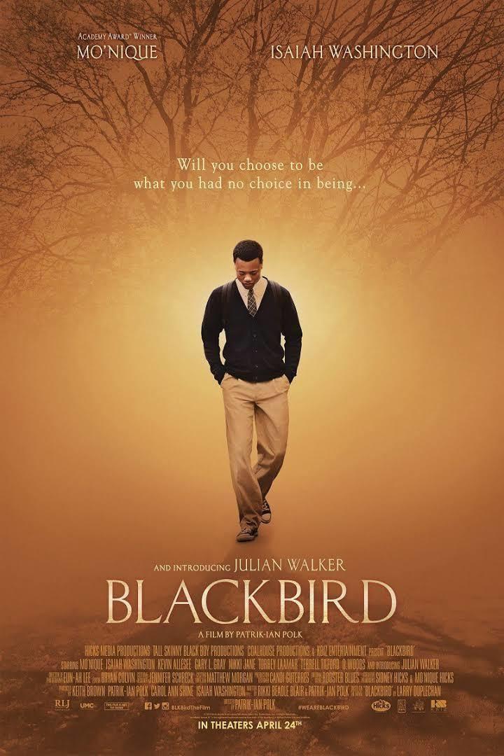 Blackbird (2014 film) t0gstaticcomimagesqtbnANd9GcRjLcXT8l2CgEWQGs