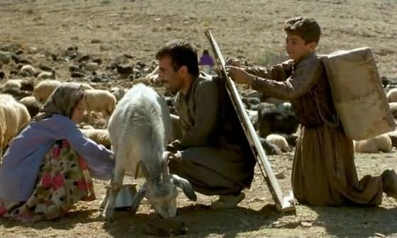 Blackboards Samira Makhmalbaf Takht siah AKA Blackboards 2000 Cinema of