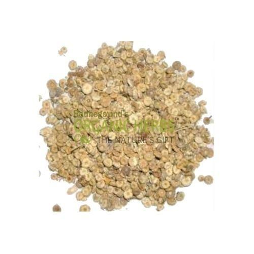 Blepharis edulis Organic Herbs Products raw herbs Uttanjan Sunishannaka