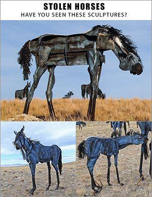 Bleu Horses bleuhorsescomimagesbleuhorsesstolenjpg