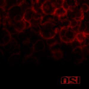 Blood (OSI album) httpsuploadwikimediaorgwikipediaen001OSI