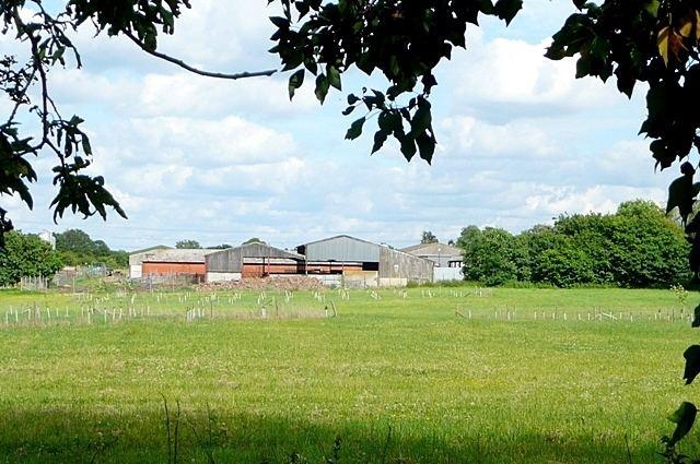 Bloomfield Hatch