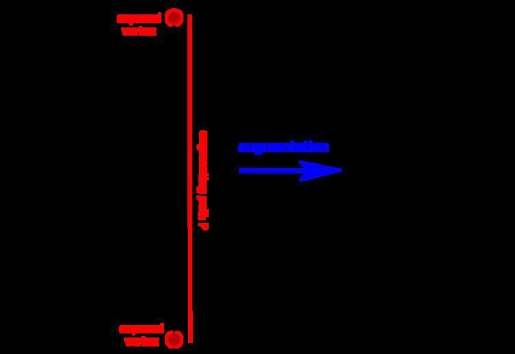 Blossom algorithm